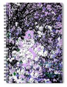 Lilac Crepe Myrtle Bloom  Spiral Notebook