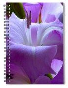 Lilac Flower Spiral Notebook