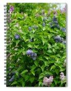 Lilac Heaven Spiral Notebook