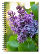 Lilac Heaven Spiral Notebook