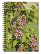 Lilac In Spring Spiral Notebook