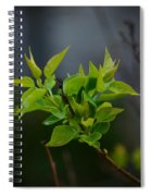 Lilac Leaves Spiral Notebook