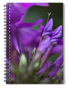 Lilac Petals And Purple Buds Spiral Notebook