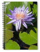 Lilac Water Lily Spiral Notebook