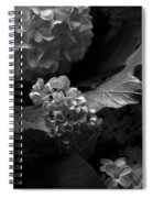 Lilacs And Hydrangeas Spiral Notebook