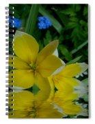Lilium Of Gold Spiral Notebook