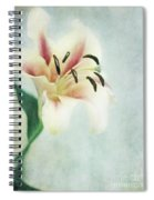 Lilium Spiral Notebook