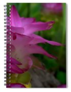 Lilly Around The Tree Spiral Notebook