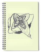 Lilly Artistic Doodling Drawing Spiral Notebook