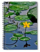 Lilly Pad Pond Spiral Notebook