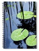Lilly Pad Pond Spiral Notebook