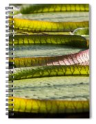 Lilly Pads Spiral Notebook