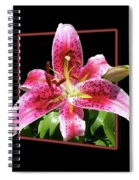 Lilly Ready To Serve Spiral Notebook