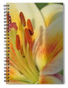 Lilly White 2 Spiral Notebook