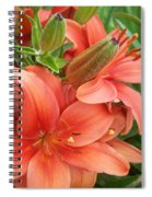 Lillys And Buds 3 Spiral Notebook