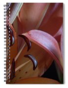 Lily 5 Spiral Notebook