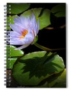 Lily And Shadow Spiral Notebook
