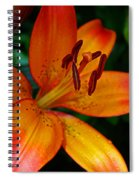 Lily Closeup Spiral Notebook