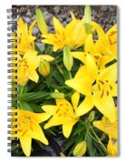 Lily Gathering Spiral Notebook