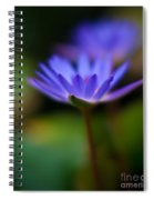 Lily Glow Spiral Notebook