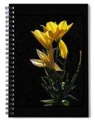Lily Light Spiral Notebook
