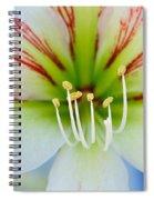 Lily -lilium Spiral Notebook