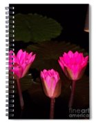 Lily Night Time Spiral Notebook