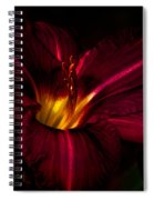 Lily Number Nine Spiral Notebook