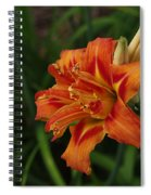 Lily Of Lilies  Spiral Notebook