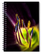 Lily Of The Forest Spiral Notebook