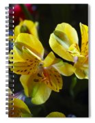 Lily Of The Incas Spiral Notebook