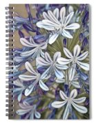 Lily Of The Nile Spiral Notebook
