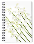 Lily-of-the-valley Flowers Spiral Notebook