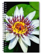 Lily On The Water Spiral Notebook