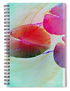 Lily Pad 1 Spiral Notebook
