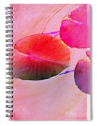 Lily Pad 3 Spiral Notebook