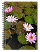 Lily Pad Haven Spiral Notebook