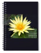 Lily Pad Yellow Spiral Notebook