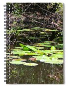 Lily Pads 1 Spiral Notebook