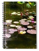Lily Pads In The Fountain Spiral Notebook