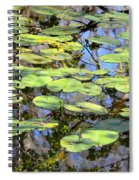 Lily Pads In The Swamp Spiral Notebook