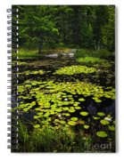 Lily Pads On Lake Spiral Notebook