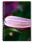 Lily Pearls Spiral Notebook