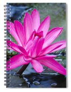 Lily Petals Spiral Notebook