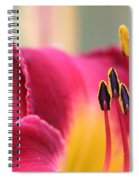 Lily Photo - Flower - Rusty Red Spiral Notebook