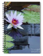 Lily Purple And White Spiral Notebook