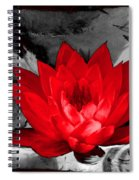 Lily Red And Koi Spiral Notebook