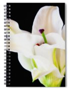 Lily Solitaire Spiral Notebook