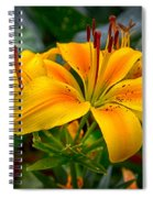 Lily Sunshine Spiral Notebook