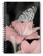 Lily With Butterly  Spiral Notebook